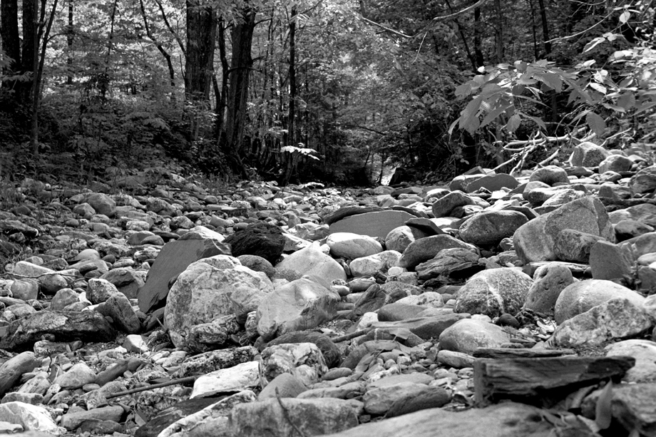 Lake St Catherine State Park, VT ~ Dry Creek ~ 2001 ~ CP013043 ~ Richard Clayton Photography ~ Cambridge Photo