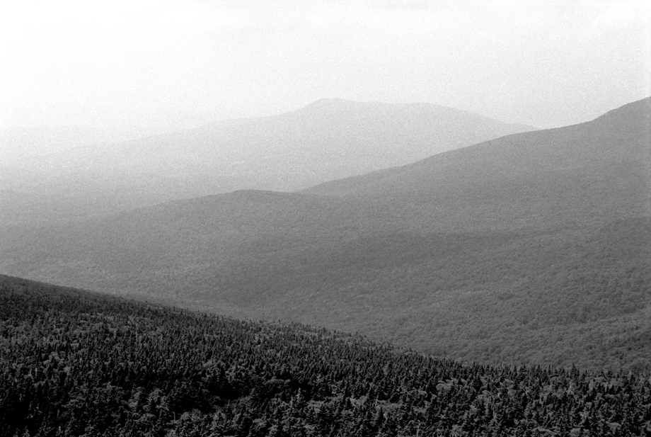 Green Mountain National Forest, VT ~ Top of Killington ~ 2001 ~ CP013045 ~ Richard Clayton Photography ~ Cambridge Photo