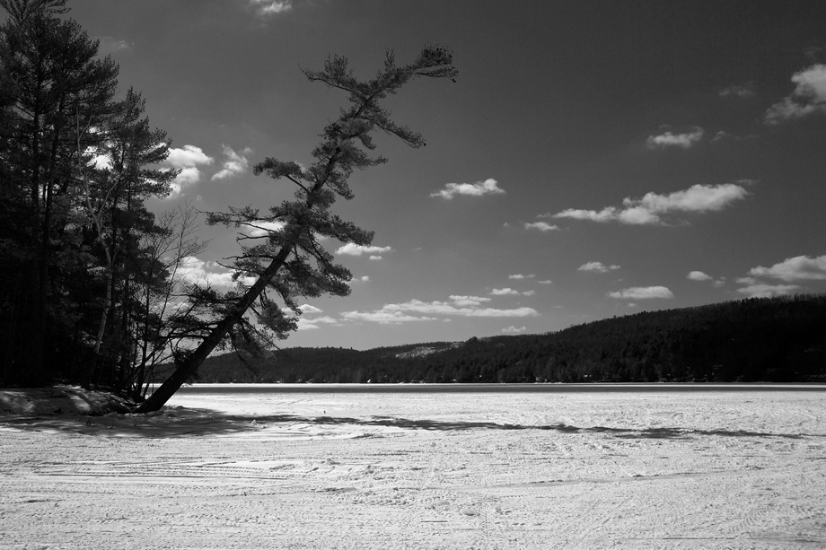 Lake St. Catherine State Park, VT ~ Snow Covered Lake ~ 2006 ~ CP063018 ~ Richard Clayton Photography ~ Cambridge Photo