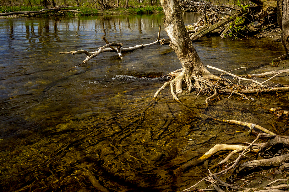 Greenwich, NY ~ Spring on the Battenkill River ~ 2016 ~ CP163022 ~ Richard Clayton Photography ~ Cambridge Photo