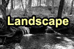 Visit the Landscape Gallery